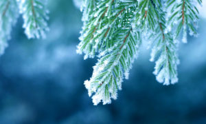 inverno pode agravar coronavirus